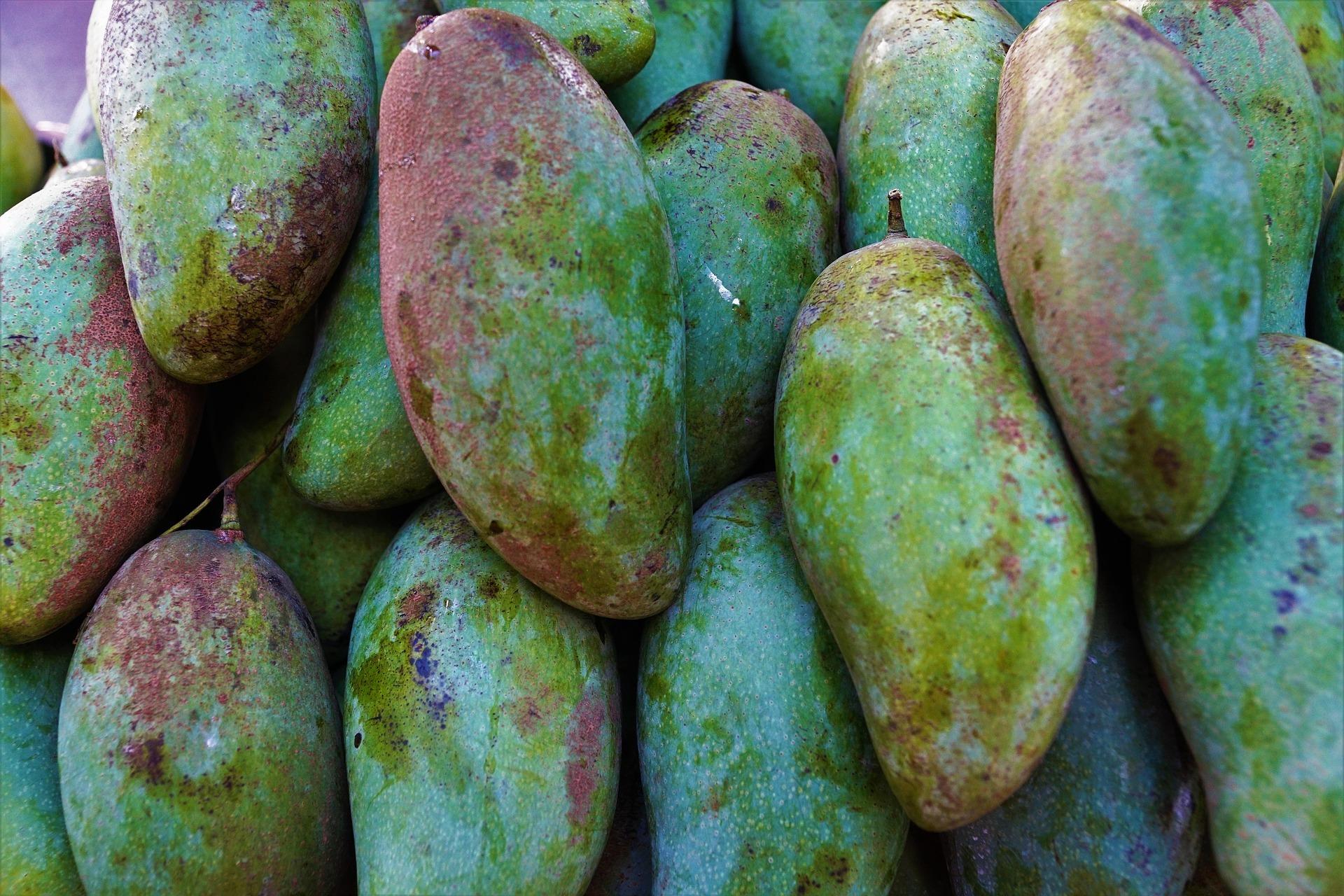 afrikanische mango eine pflanze f r das volksleiden bergewicht. Black Bedroom Furniture Sets. Home Design Ideas